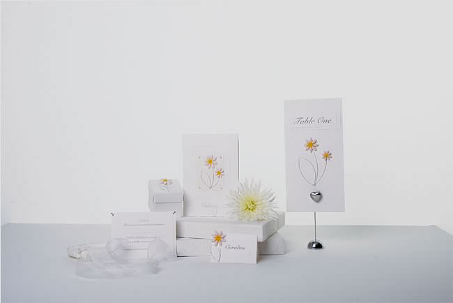 Wedding Stationery Essex, Essex wedding stationers create Daisy wedding cards, table plans, seating plans,table numbers, favours